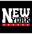 T shirt typography New York vector image vector image