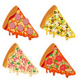tasty fresh pizza slices isolated on white vector image vector image