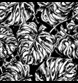 seamless pattern with exotic leafs vector image