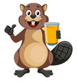 beaver with juice on white background vector image vector image