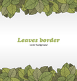 Borders of foliage vector image vector image