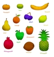 fruit set with texture vector image vector image