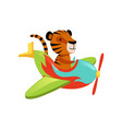 funny tiger flying on multi-colored airplane vector image