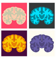 set of brain in flat monochrome color on white vector image vector image