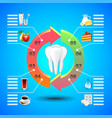 stomatology infographics on blue background vector image vector image