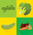 vegetables3 vector image vector image