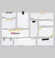 white ripped lined paper strips collection vector image