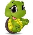 little turtle vector image