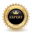 Expert Badge vector image