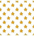 Five pointed star pattern cartoon style vector image vector image