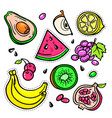 fruits - isolated retro stickers set vector image