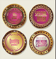 gold and pink labels vector image