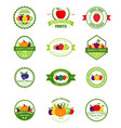 organic farming products labels vector image vector image