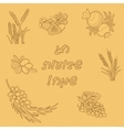 Seven Species of the Shavuot set with inscription vector image vector image