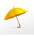 yellow umbrella isolated vector image