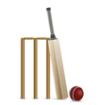 Cricket Bat Ball and Wicket vector image