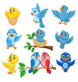 cartoon happy birds collection set vector image