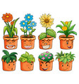 Different types of plant in clay pots vector image vector image