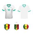 senegal flag cheer football support vector image vector image