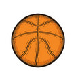 basketball ball isolated drawn sport equipment vector image