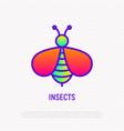cartoon bee thin line icon vector image