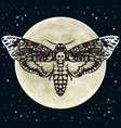 death head hawkmoth on the full moon and night sky vector image vector image