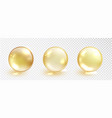 gold oil bubble set isolated on transparent vector image vector image