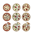 Pizza with pizza slices icons vector image