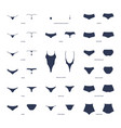 womens panties collection lingerie vector image