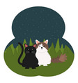 cute little cats in field vector image vector image