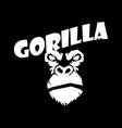 head gorilla vector image vector image