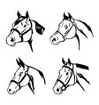 horse animal black icon logo design vector image