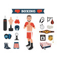 male boxer with boxing equipment tools vector image vector image