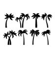 Palm tree black set vector image vector image