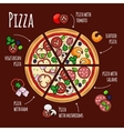 pizza ingredients for pizza menu vector image vector image