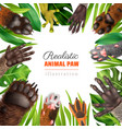 realistic animal paw frame vector image vector image