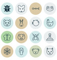 zoo icons set with bug arachnid frog and other vector image