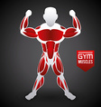 bodybuilding design vector image