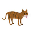 cute cat animal trend cartoon style vector image