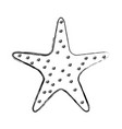 starfish tropical isolated icon vector image vector image