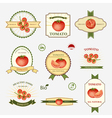 Tomato set of label design vector image