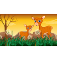 Two deers near the grass vector image vector image