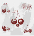 vintage ink hand drawn cherry on grunge background vector image vector image