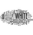 white balance text word cloud concept vector image vector image