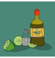 Mexican background with tequila vector image
