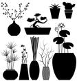Flowerpot set vector image vector image