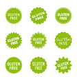 gluten free icon set healthy food logo labels vector image