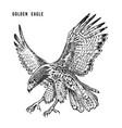 golden eagle wild forest bird of prey hand drawn vector image