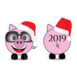 new year chinese 2019 of the pig set two vector image vector image