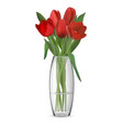 Bouquet of red tulips in glass vase
